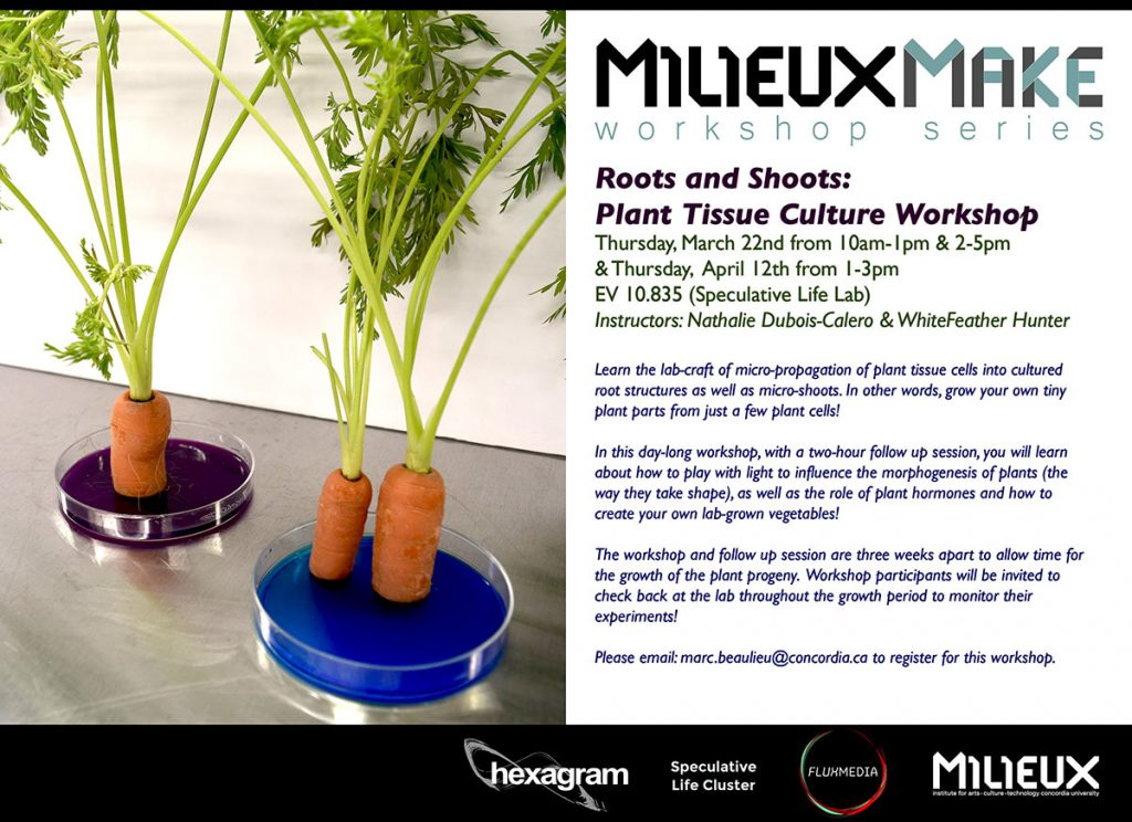 MilieuxMake: Roots & Shoots - Plant Tissue Culture Worskhop